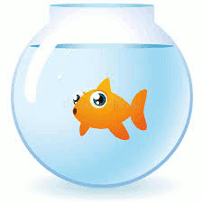 Mindless goldfish in bowl